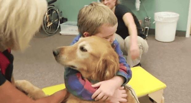 perro-terapia-trauma-cerebral4