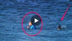 surfista-se-salva-de-ataque-de-tiburon