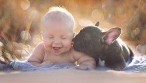 bulldog-y-bebe-como-hermanos