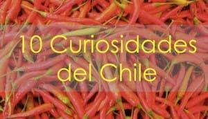 curiosidades-chile