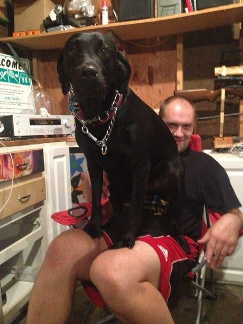 perros-grande-cree-cachorros-14