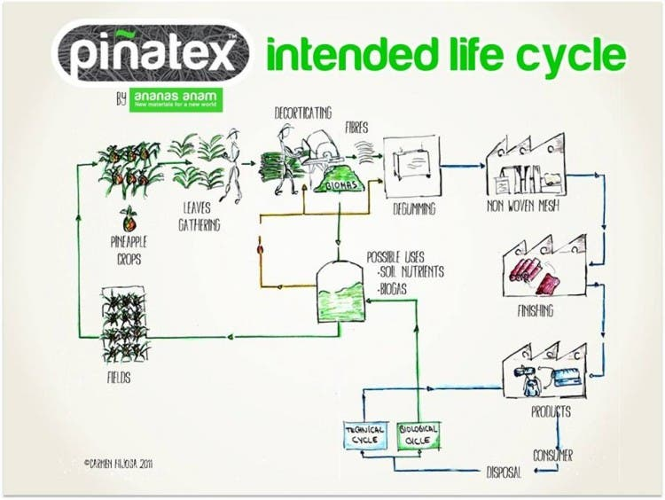 pinatex-cuero-ecologico-4
