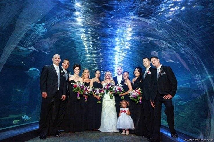 boda-acuario10