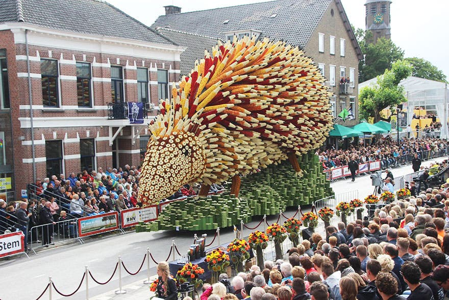 desfile-flores8