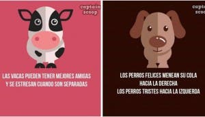 secretos-animales20-