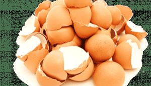 cascarones-huevos