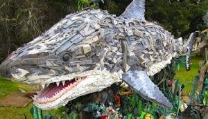 tiburon-reciclaje-plastico