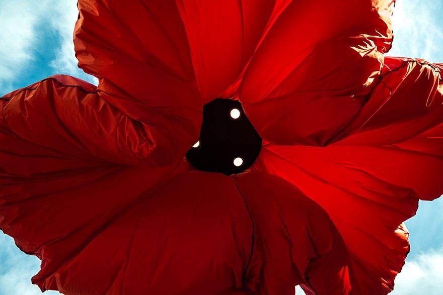 lamparas flores inflables 3