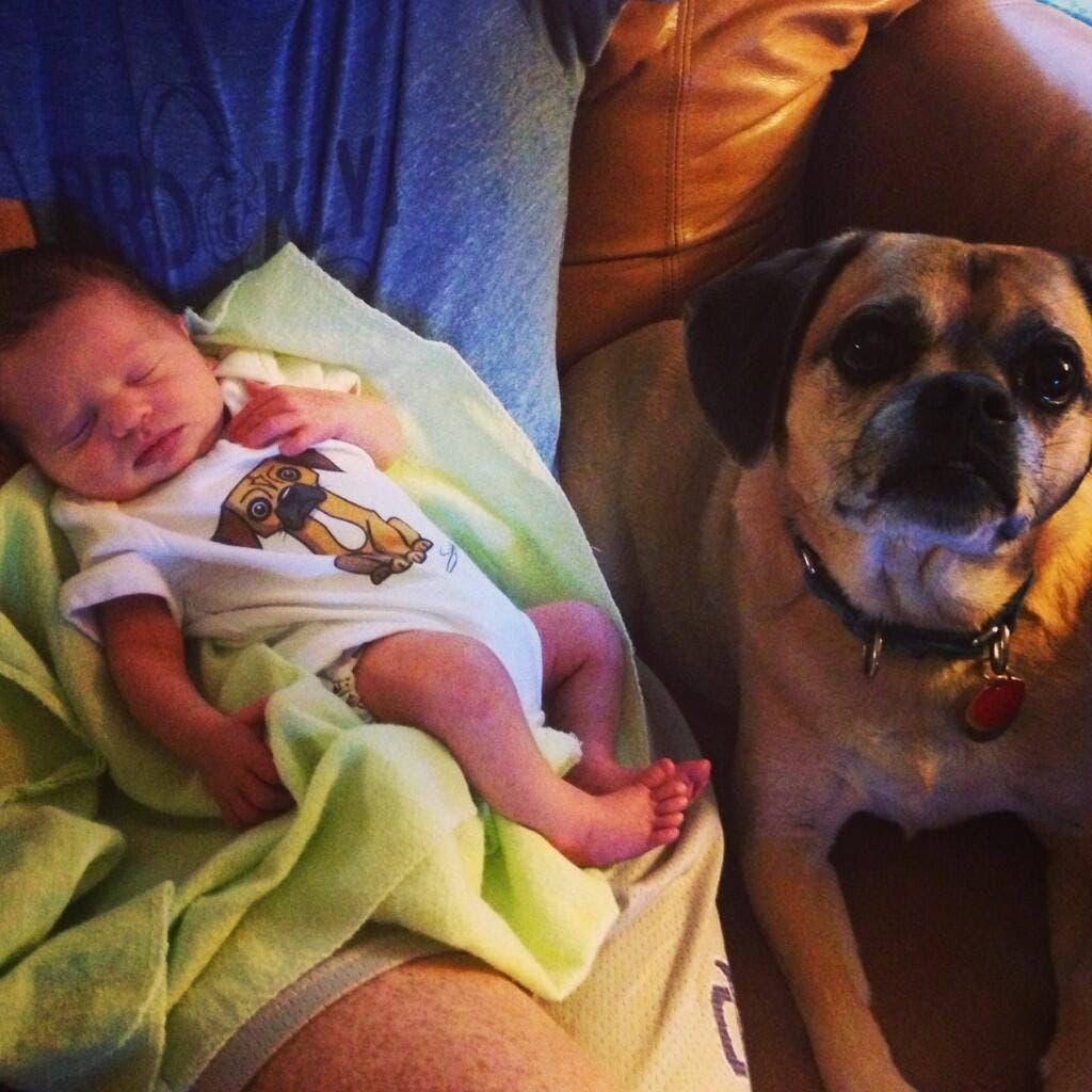 perritos-con-bebes-27