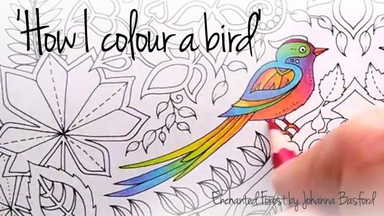 Los adultos también deberíamos tener libros para colorear… Sí, es muy bueno ¡Descubre el por qué!