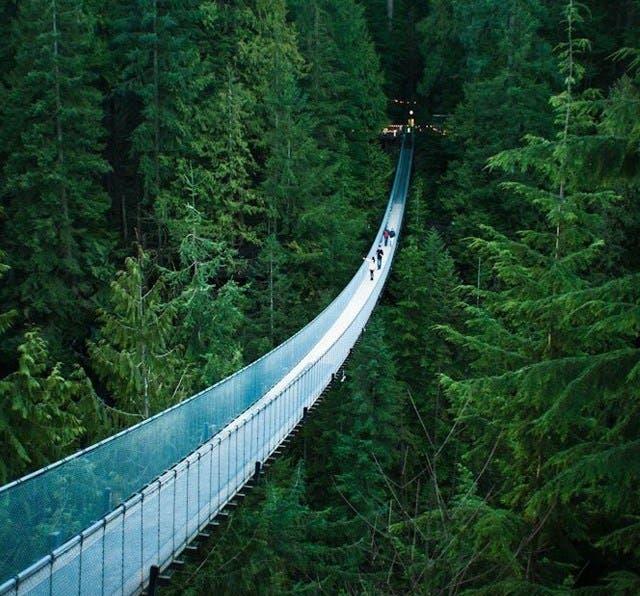 puentes-impresionantes25