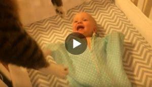 reaccion-de-bebe-gatita
