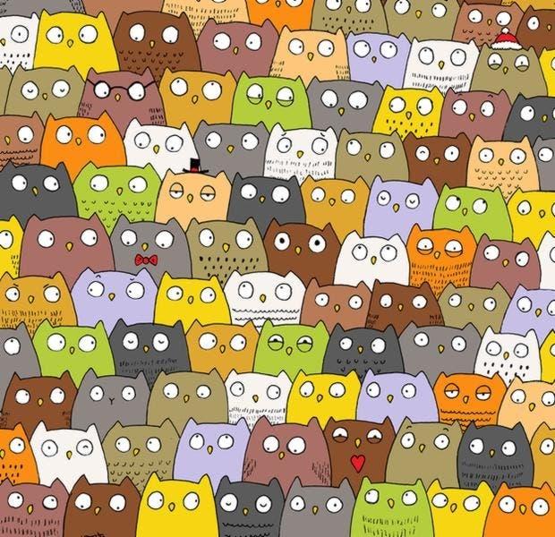 encontrar-panda-entre-multitud6-