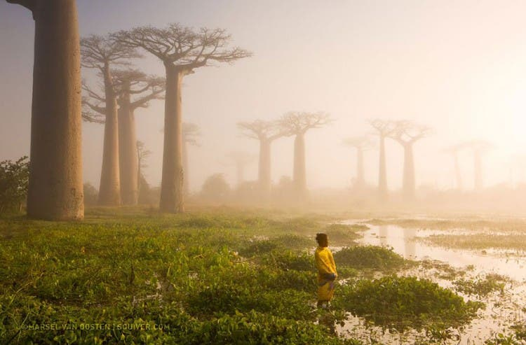 top-fotos-national-geographic7