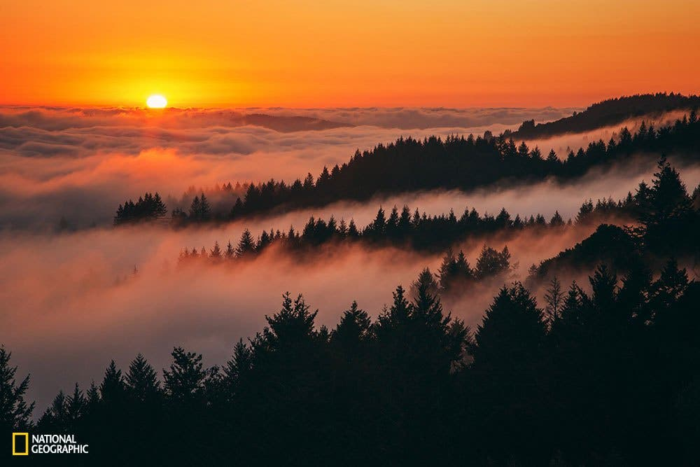 A warm and peaceful sunset above the fog at Mount Tamalpais, Northern California.