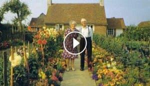 ancianos-fotografias-cada-estacion