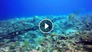 ancla-destruye-corales