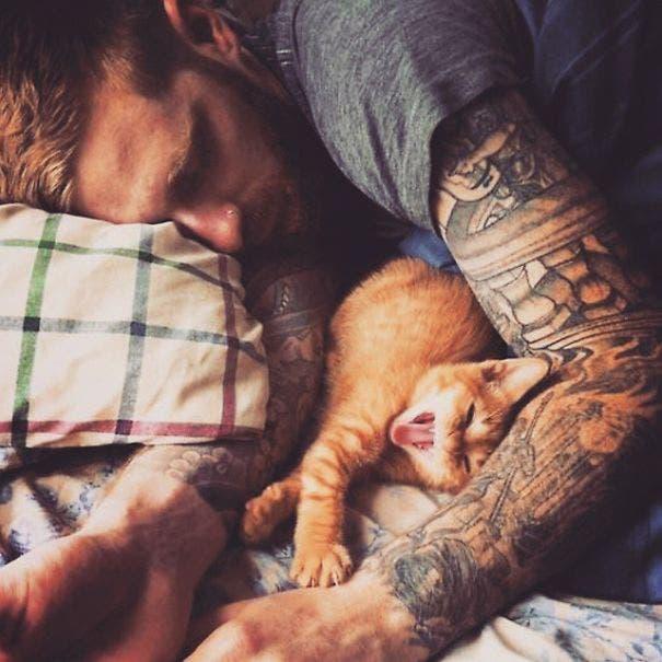 chicos lindos con gatitos 2