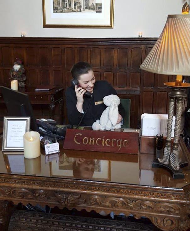 conejo en hotel 1