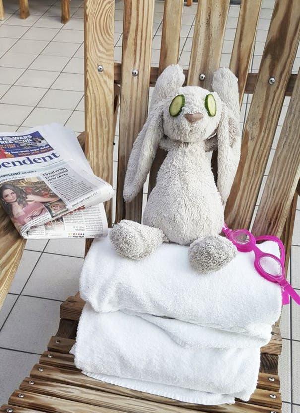 conejo en hotel 2