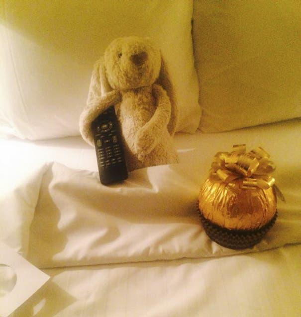 conejo en hotel 5