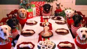 familia-perros-navidad8 - copia