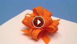 lazos-de-zanahoria6
