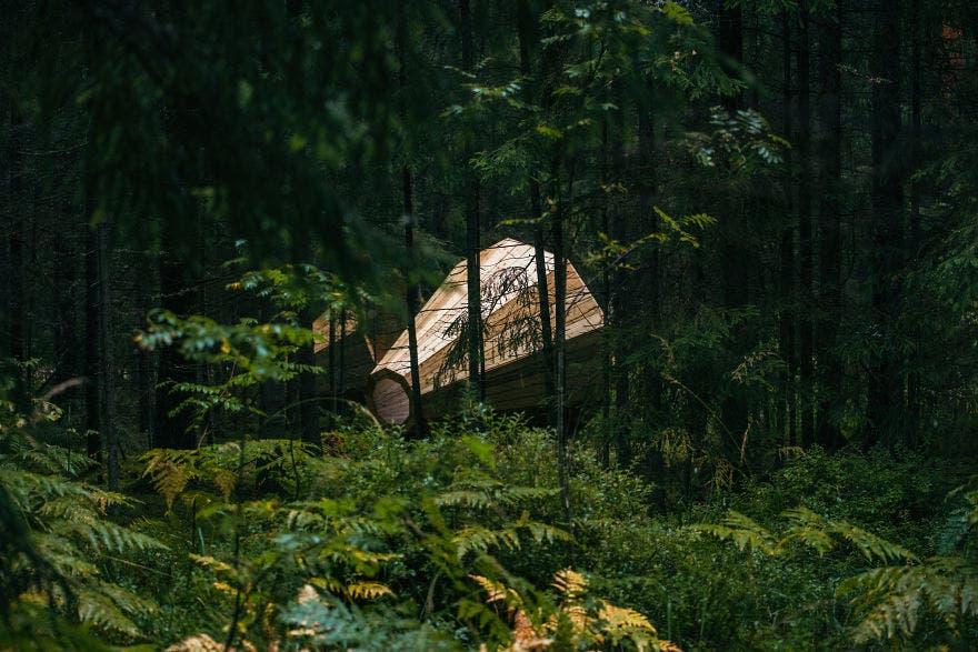 megafonos-gigantes-en-bosque-en-estonia-5