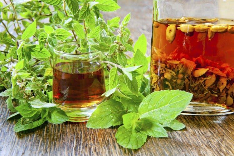 plantas-medicinales-propiedades11