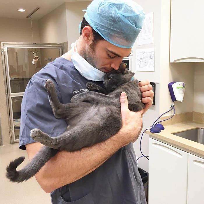 veterinario-apuesto4