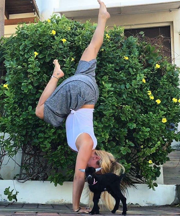 cabra del yoga 1