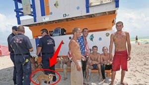 emigrante cubano y perro 6