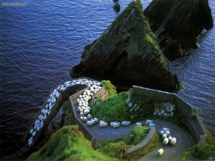 irlanda 13
