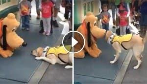perro-conoce-a-pluto4