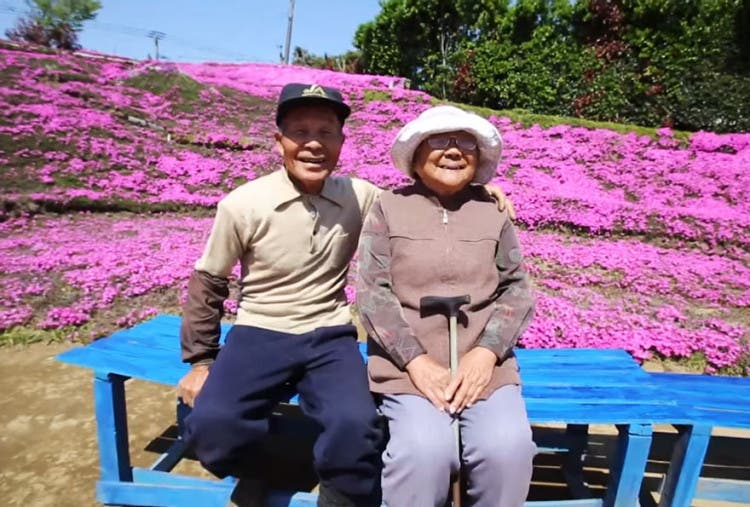 romantico jardin de flores 1