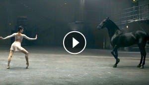 bailarina-vs-caballo-dos