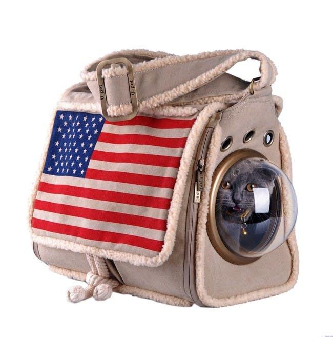 gatos astronautas 3