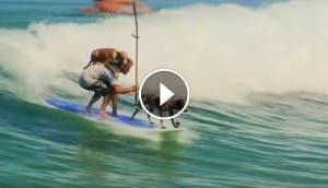 hombre-que-surfea-con-dos-perros4