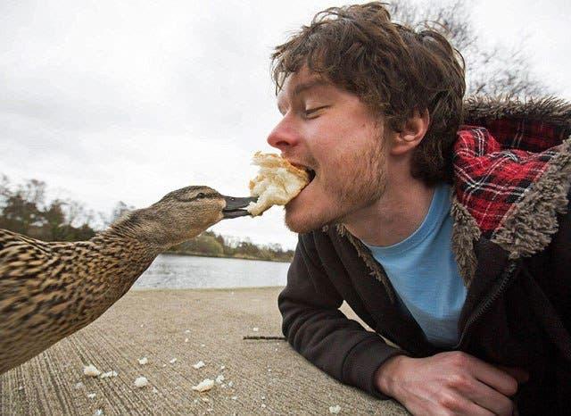 las-mejores-selfies-con-animales-1