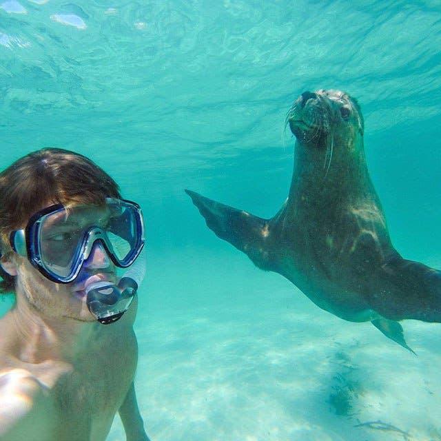 las-mejores-selfies-con-animales-2