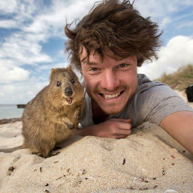 las-mejores-selfies-con-animales-4