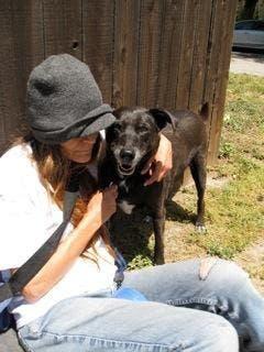 mujer sin hogar ayuda indigentes con perros 1