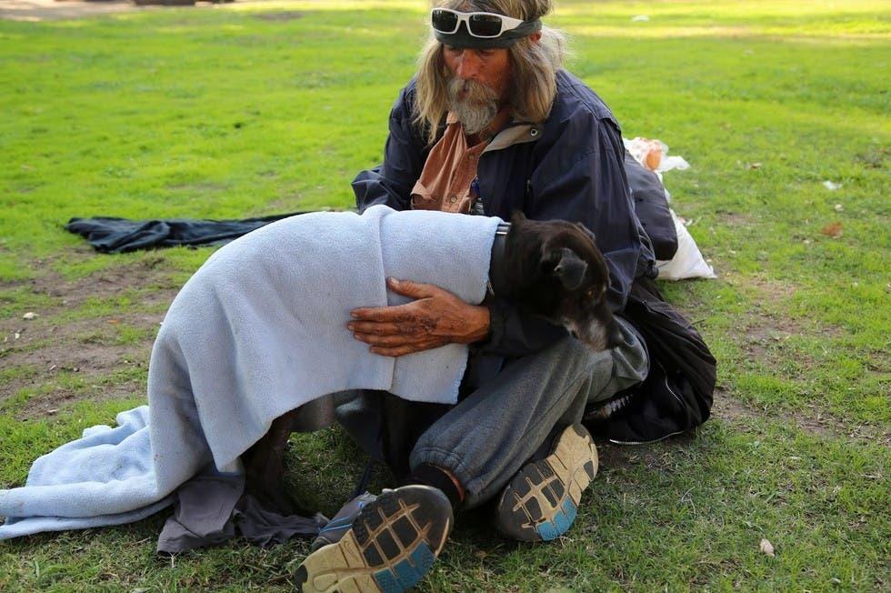 mujer sin hogar ayuda indigentes con perros 2
