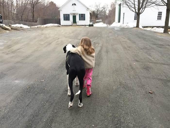 nina-camina-gracias-a-su-perro-gran-danes2 - copia