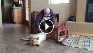 padre-alzheimer-terapia-perro-mejor-amigo-recupera-habla