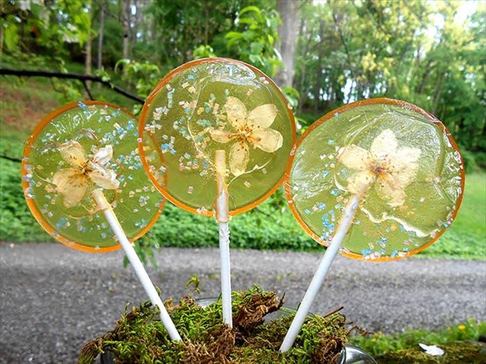 paletas de flores de caramelo 2