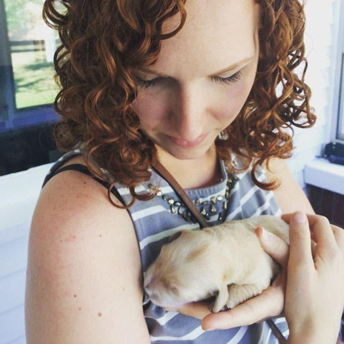perro con braquets 1
