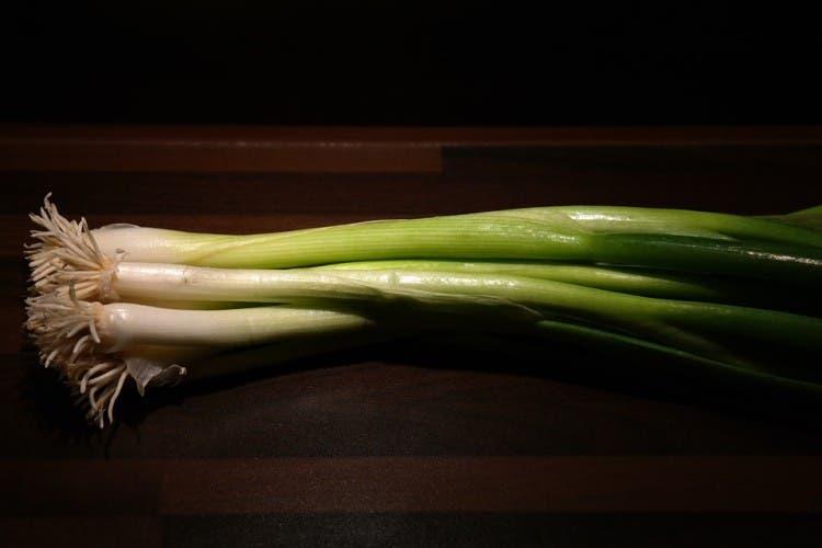 vegetales para comprar y cultivar 1