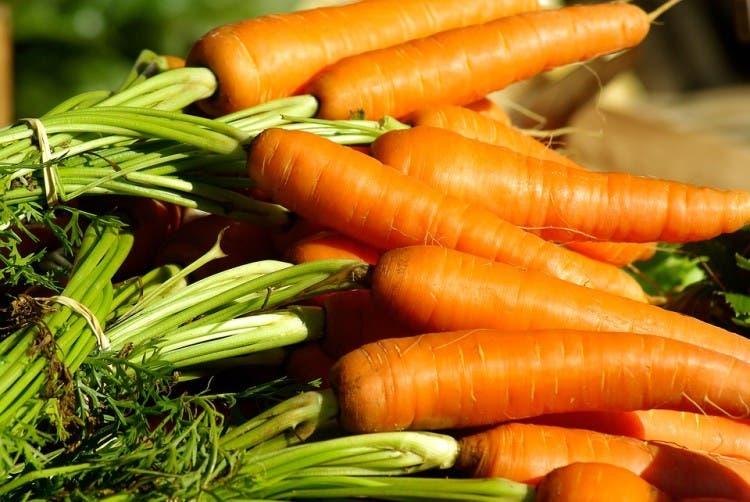 vegetales para comprar y cultivar 6