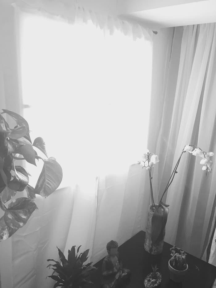 ventana falsa 8